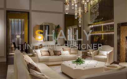 Drawing Room Interior Design in Hari Nagar